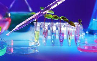 Cambrico Biotech