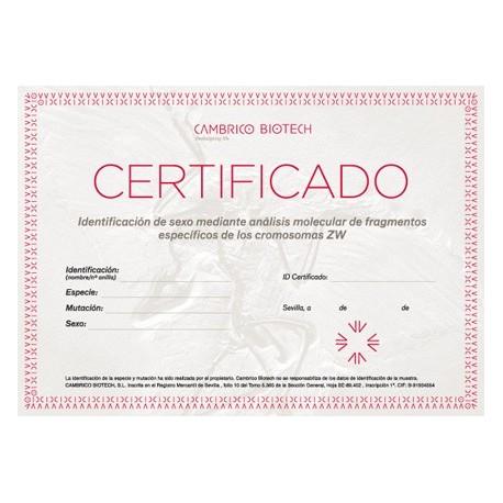 Sexado + Certificado de seguridad