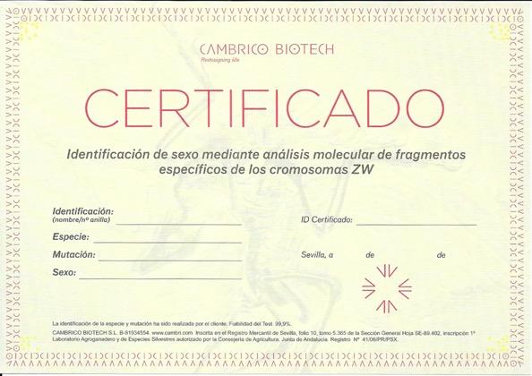Certificado Sexado de Aves - Cambrico Biotech