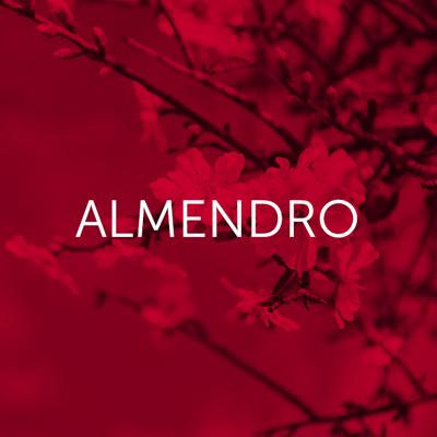 Almendro - Cambrico