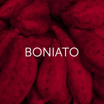 Boniato - Cambrico